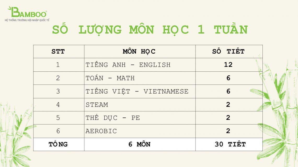 Bamboo - Số lượng tiết học